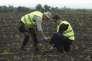Des enquêteurs sur le site du crash du MH17, le 19 juin.