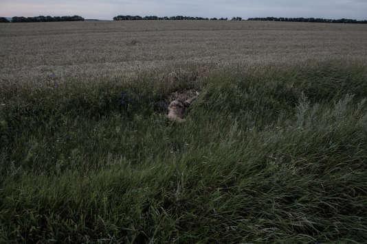 Corps d'un passager sur le site du crash à proximité du village de Hrabove, en Ukraine.