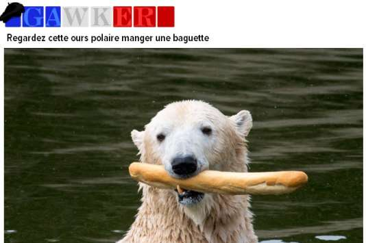 Une capture du site French Gawker.