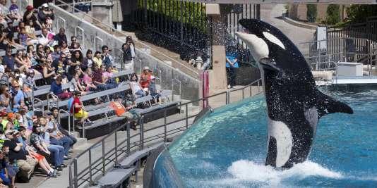 Parc SeaWorld à San Diego, le 19 mars 2014.