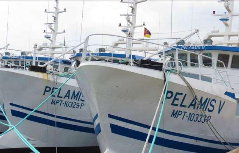Deux des vingt-quatre navires livrés par la France au Mozambique pour la pêche au thon. Des embarcations pouvant être facilement transformés en navires de guerre.