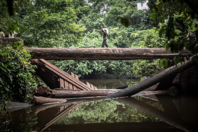 Sur la route entre Zongo et Libenge, dans le nord-ouest de la République démocratique du Congo.