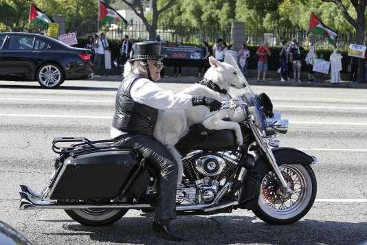 Jeremiah Gerbracht se promenant en Harley Davidson avec son chien à Los Angeles, en juillet 2014.