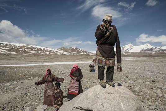 Au pied du glacier de Jianggendiru, un nomade tibétain surveille son troupeau de yaks.