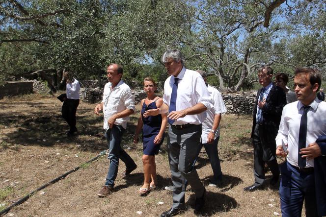 Le ministre de l'agriculture, Stéphane Le Foll, en visite en Corse, mercredi 29 juillet.