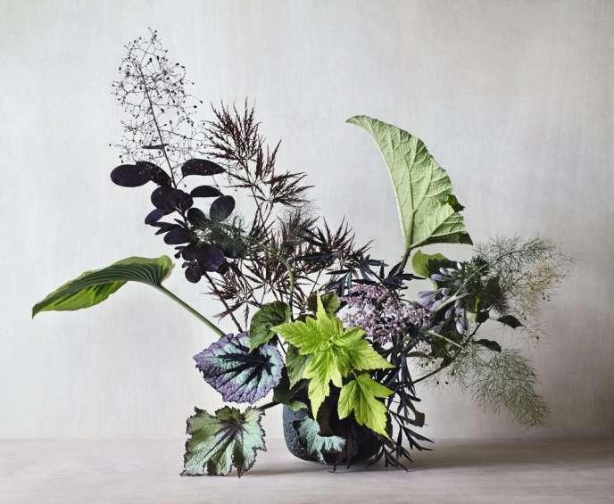 Un beau feuillage peut se  révéler aussi décoratif qu'un bouquet de fleurs (pot de Pilar Wiley).
