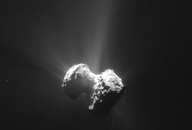 Une photo de «Tchouri» prise par la NavCam de la sonde Rosetta le 20 juillet.