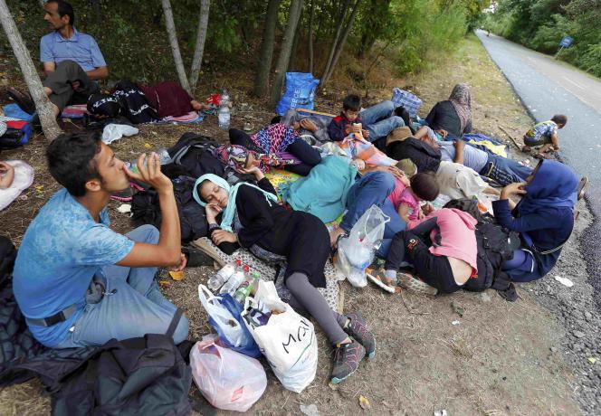 Un groupe de migrants au bord d'une route après avoir traversé illégalement la frontière depuis la Serbie, près d'Asotthalom, en Hongrie, le 30 juillet 2015.