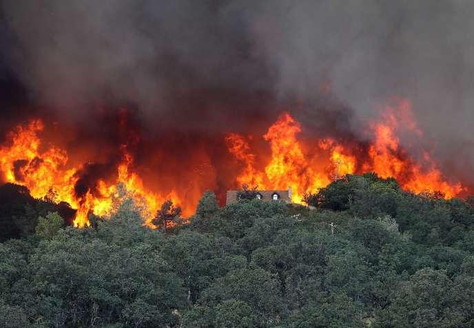 Incendie dans la région de Lower lake, en Californie.