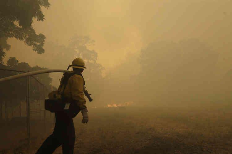 D'après le Service national des forêts (USDA Forest Service), qui veille sur les 780 000 kilomètres carré de forêts et de prairies des Etats-Unis, les incendies ravagent désormais deux fois plus d'hectares chaque année qu'il y a 40 ans.