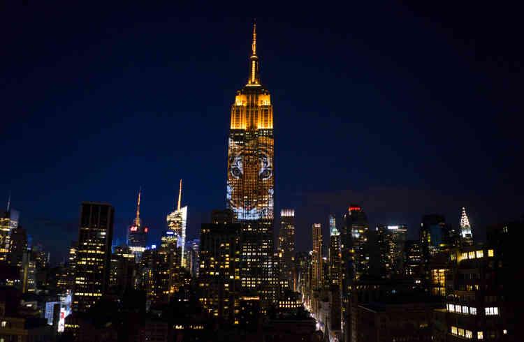 """""""Il voulait le bâtiment le plus emblématique, et pour lui c'était l'Empire State Building"""", a expliqué à l'AFP le producteur de """"The Cove"""", Fisher Stevens, ajoutant que le but était de sensibiliser les gens sur ces espèces menacées et """"d'entamer une conversation"""" pour éviter """"la sixième disparition en masse de la terre""""."""