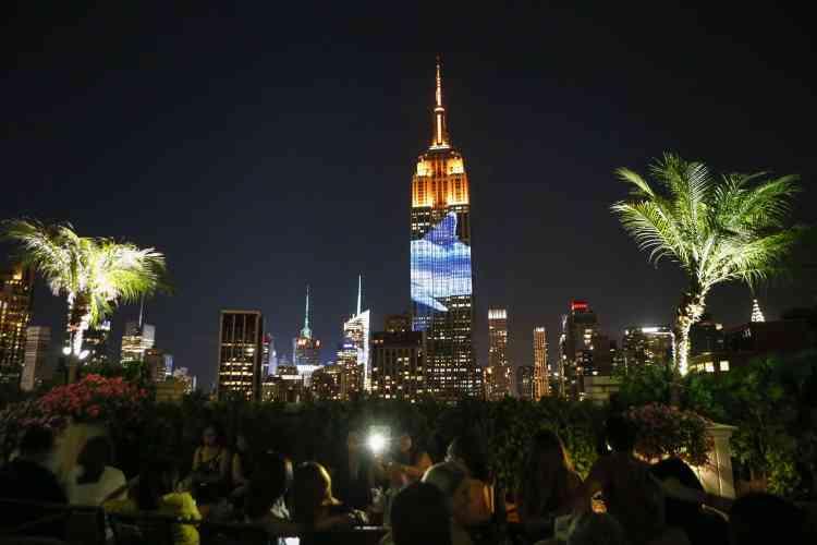 Des images animées géantes d'animaux en danger ont été projetées samedi 1er août au soir sur l'Empire State Building à New York.