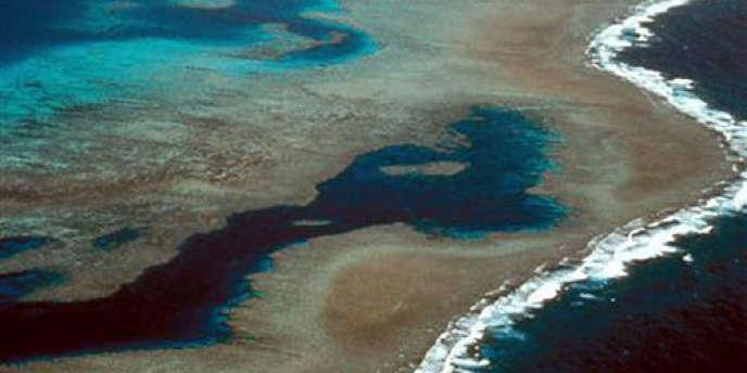 La Grande Barrière de corail est le plus grand récif corallien du monde. Il s'étend au nord-est de la côte australienne sur 2 000 kilomètres, de Cap York à Bundaberg.