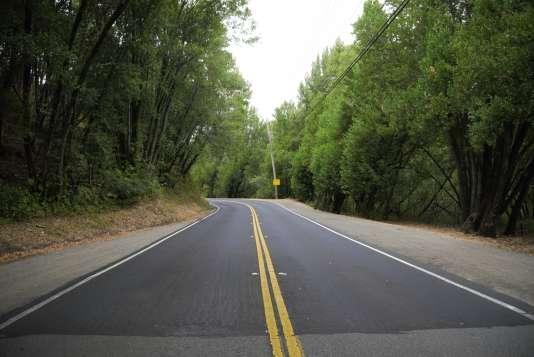 Lucas Valley road, que George Lucas a choisi en raison de son nom, où se trouvent Skywalker Ranch et Grady Ranch.