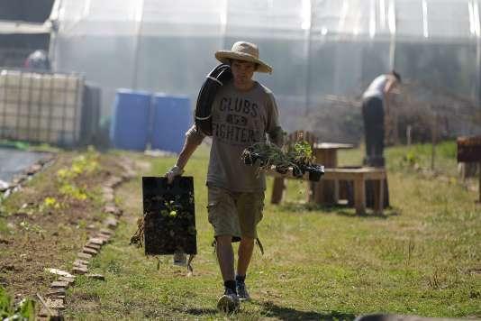 Une cinquantaine de militants travaillaient à la ferme des Bouillons.