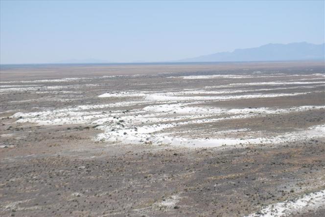 Le désert de White Sands au Nouveau-Mexique (Etats-Unis).