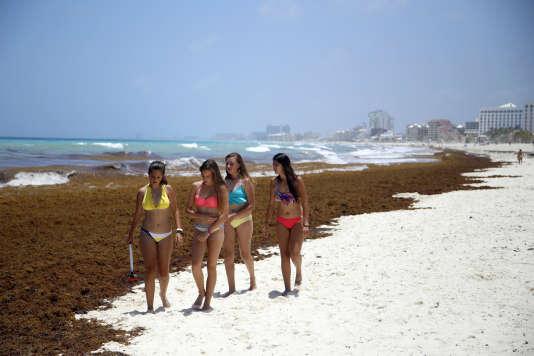 Sur une plage de Cancun, au bord de la mer des Caraïbes, au Mexique.