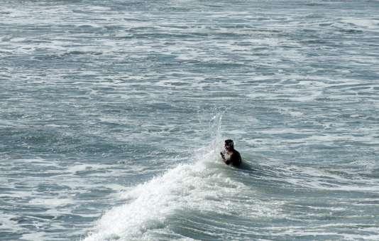 Un baigneur dans les eaux chaudes du Pacifique, à Oceanside, Californie, le 14 août.