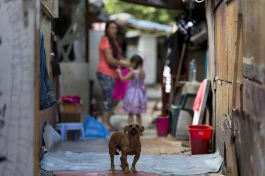Dans le bidonville de la Samaritaine, le 14 août 2015.