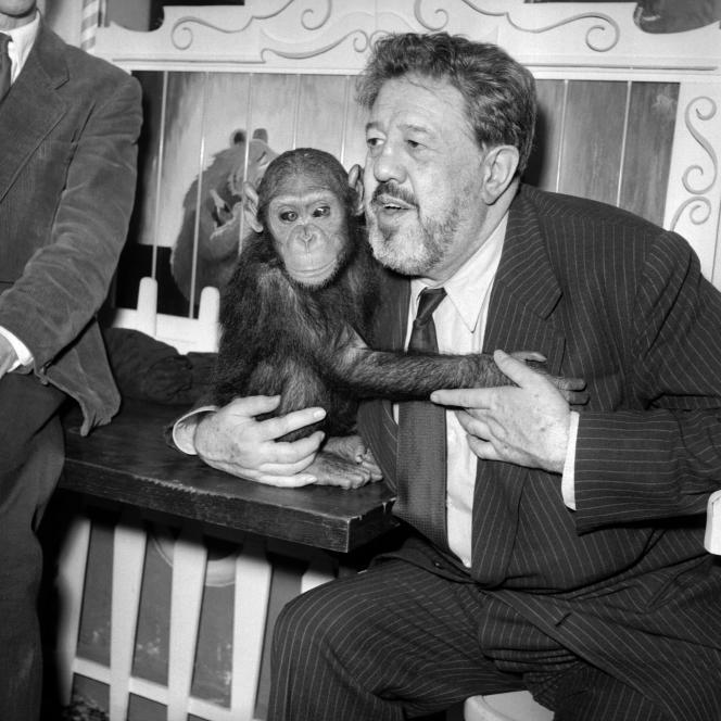 L'acteur Michel Simon pose avec l'une de ses deux guenons, le 24 janvier 1956.