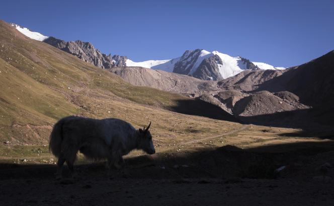 Le massif du Tien Shan, en Asie centrale.