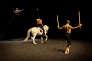 """""""Golgota"""" avec Bartabas et le danseur de flamenco Andres Marin aux haras d'Annecy en octobre 2010."""