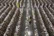 Un employé d'Amazon travaille dans un centre de distribution de l'entreprise à Phoenix en Arizona en novembre 2013.