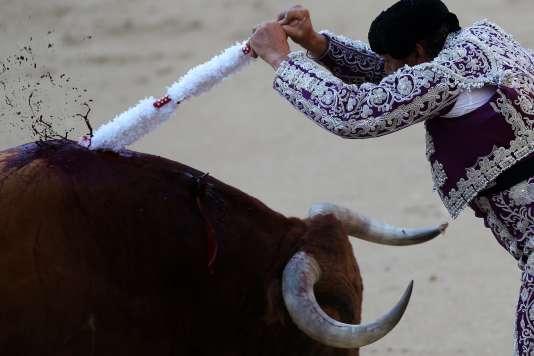 """Un """"banderillero"""" plante une banderille dans le dos d'un taureau, lors d'une corrida à l'arène de Las Ventas, à Madrid, le 9 août."""