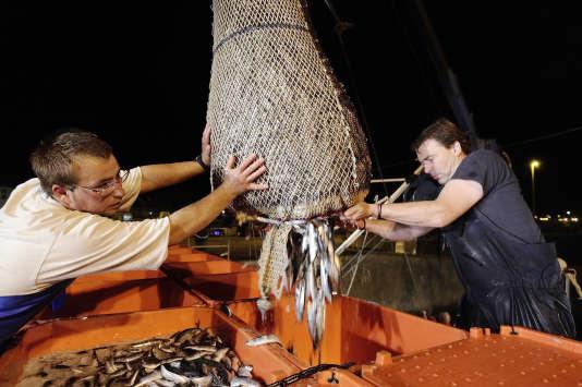 Des marins-pêcheurs chargent des caisses de poisson à leur retour de pêche à Quiberon en Bretagne en septembre 2013.