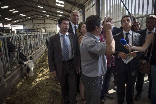 Le président du parti Les Républicains, Nicolas Sarkozy, visite une exploitation agricole, le 19 août 2015 à St Privé, dans l'Yonne.