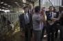 Nicolas Sarkozy en visite dans une exploitation agricole, le 19 août à Saint-Privé (Yonne).