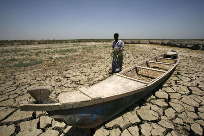 Près de la ville de Nassiriya, en Irak, en juin.
