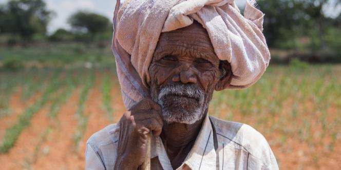 La main tendue aux cultivateurs de guar