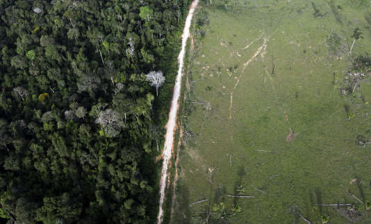Une zone de déforestation illégale dans l'Etat de Para au Brésil en 2012.