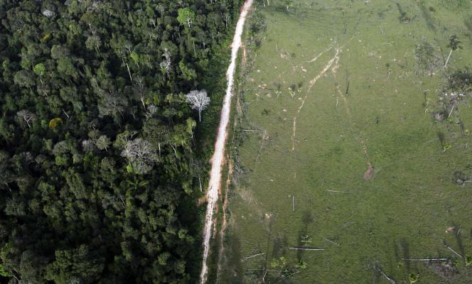 Une vue aérienne montre une déforestation illégale dans l'Etat du Para, au Brésil.