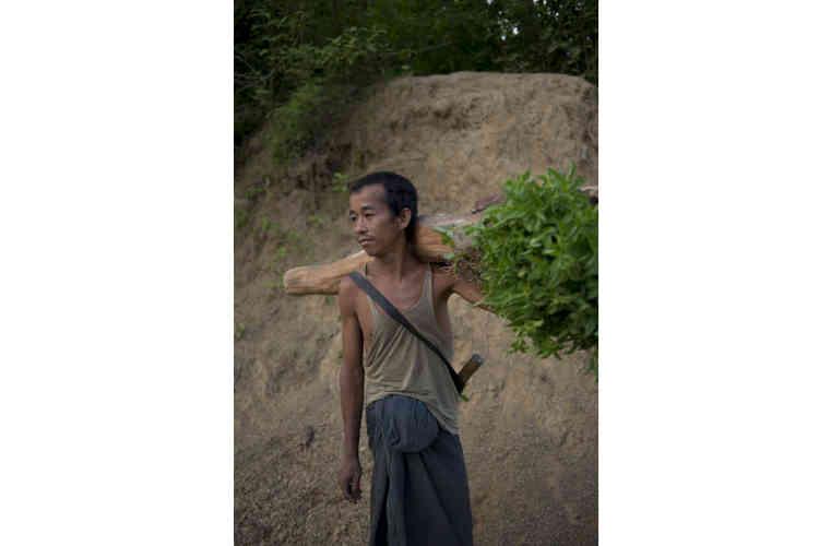 Un habitant du village de Hmawngbuchhuah qui vient de cueillir des feuilles de menthe. Pendant la mousson, son village est inaccessible.