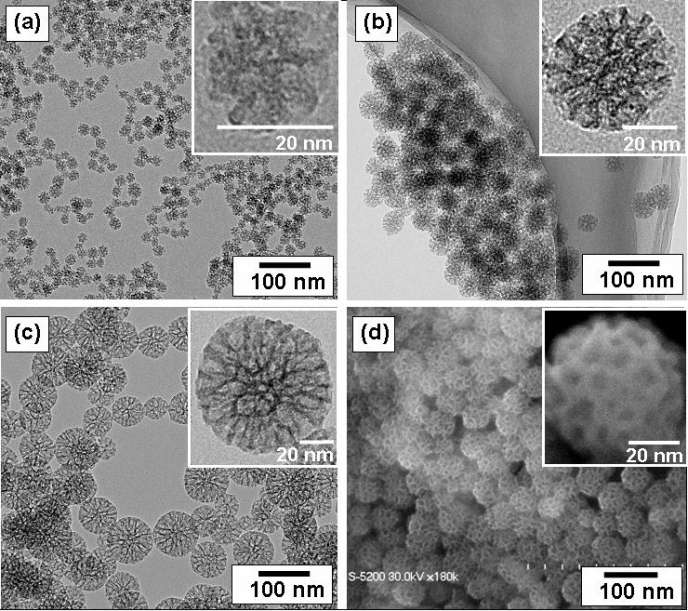 Nanoparticules de silice.