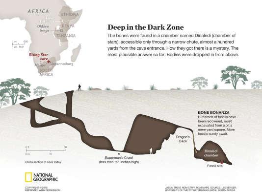 """Coupe de la grotte """"Rising Star"""" où les fossiles d'""""Homo naledi"""" ont été retrouvés (à paraître dans le numéro d'octobre du """"National Geographic"""")."""