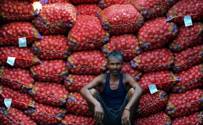 Les perspectives de récoltes mondiales établies par la FAO se chiffrent à 2,54 milliards de tonnes soit 13,8 millions de tonnes supplémentaires par rapport à 2014 – déjà une année d'abondance.