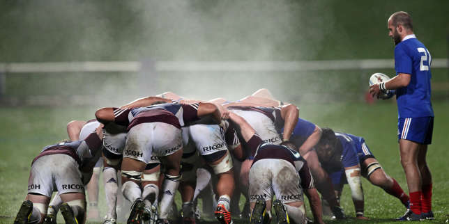 Coupe du monde de rugby tf1 et canal entrent en m l e - Dates coupe du monde de rugby 2015 ...