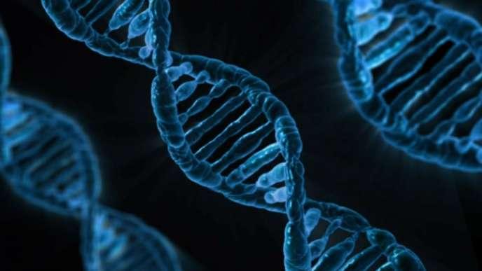 Chaîne d'ADN.