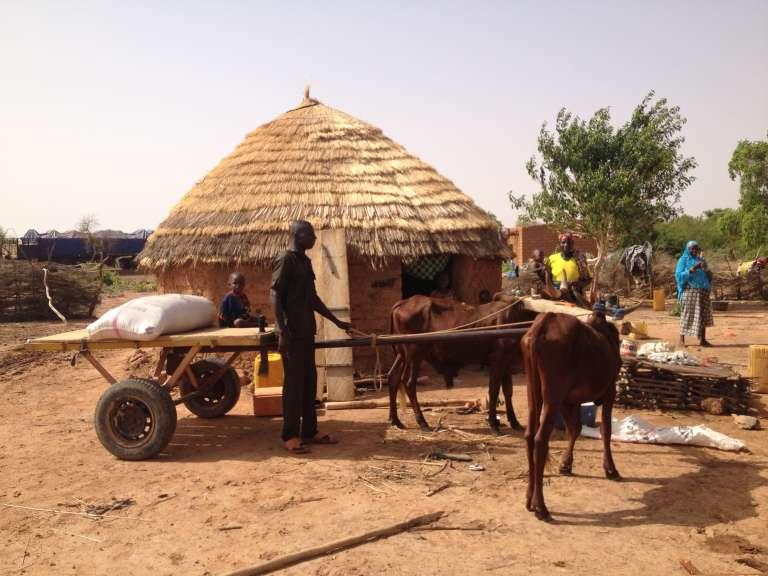 Thomas Piketty a-t-il déjà passé la nuit dans une case comme celle-ci ? demande Gaël Giraud. Près de Gaya, Niger, juin 2015.