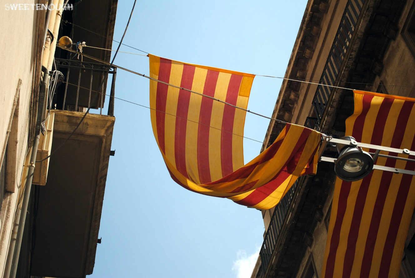 La Senera és una de les banderes més antigues d'Europa i daten del segle IX.'un des drapeaux les plus anciens d'Europe et date du IXe siècle.