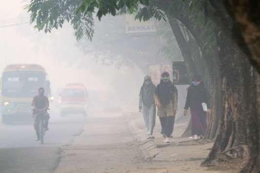 Les cultures sur brûlis et les incendies de forêt qui sévissent dans des îles du nord de l'archipel ont provoqué une brume de pollution qui recouvre Singapour, une partie de la Malaisie et le nord de l'Indonésie (ici, sur l'île de Sumatra) depuis plusieurs semaines, augmentant sensiblement la pollution et perturbant le trafic aérien.