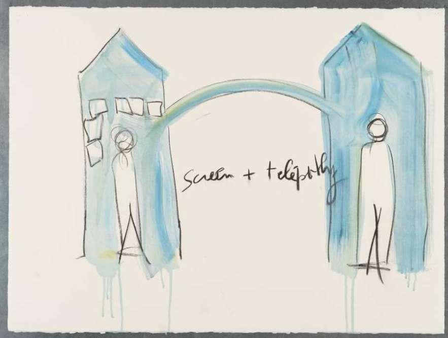 « Un des acteurs les plus inventifs de la scène artistique contemporaine, Fabrice Hyber, propose non plus un moment de contemplation mais une plateforme d'expérience sensible pour tester ses propres aptitudes télépathiques, sous la forme d'un laboratoire où se succèdent différentes cabines dans lesquelles le visiteur de l'exposition est invité, seul ou à plusieurs, à évaluer ses capacités de transmission (à l'ère globalisée des réseaux sociaux). Une façon de nous dire combien la télépathie ne se jauge pas à son degré de réalité mais à sa capacité d'augmenter les possibilités de contact avec un réel souvent trop formaté. »