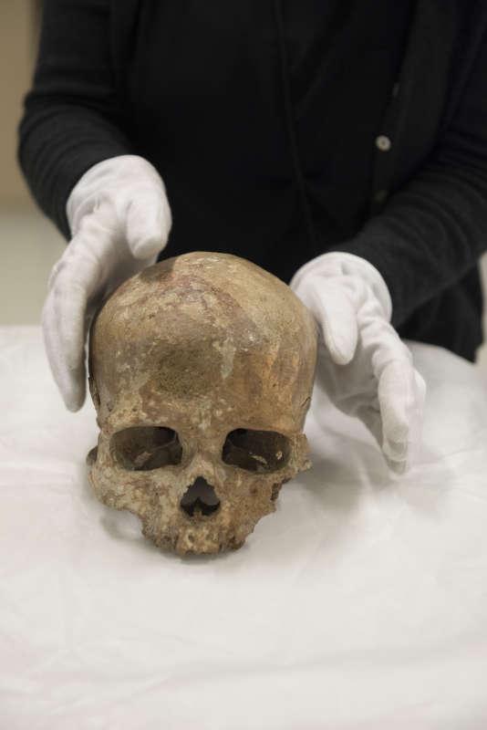 Le crâne de Cro Magnon 1.