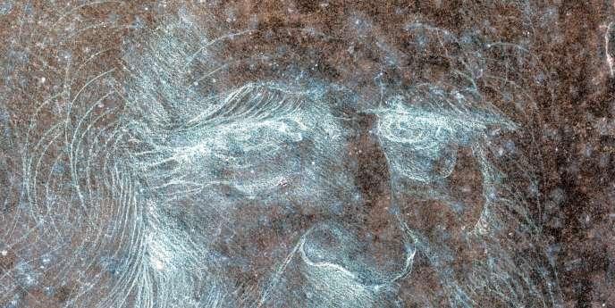 Léonard de Vinci.
