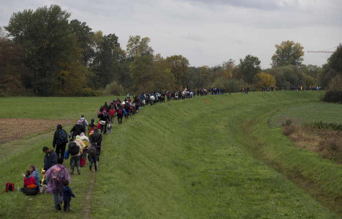 Une file de migrants vient de traverser la frontière croate et marche à Brezice, en Slovénie, le 19 octobre 2015.