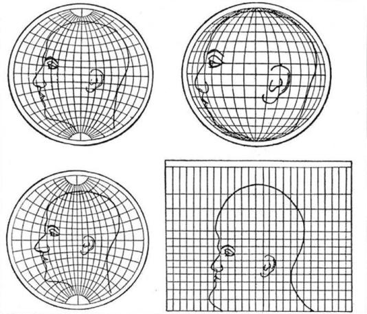 Si l'on représentait une tête avec une projection géographique.