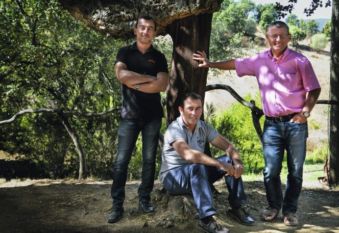 Henri, Jacques et Jean-Charles Abbatucci.